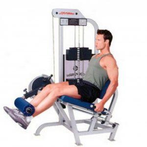 Lifefitness pro 1 leg extension