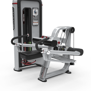 9-IPTD2 TRICEPS PRESS